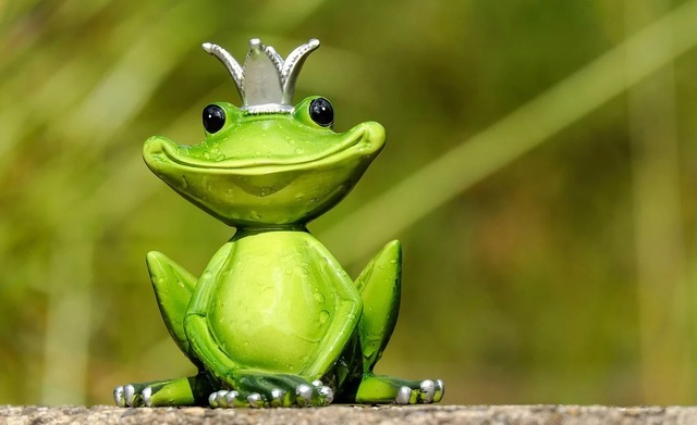 frog-2240764_1280.jpg